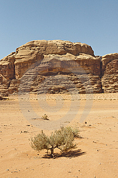 View Of The Desert In The Wadi Rum Stock Images - Image: 23061484