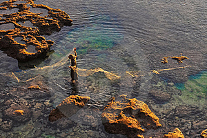 Fisherman At The Sea Coast With Fishing Net Royalty Free Stock Photography - Image: 23076147
