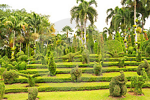 Garden With Animal Shaped Design Royalty Free Stock Photos - Image: 23095748