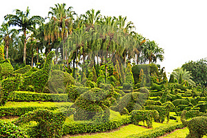 Garden With Animal Shaped Design Stock Photography - Image: 23095952