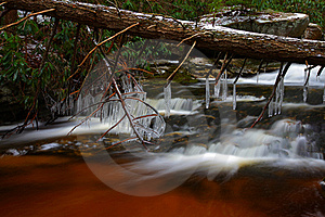 Natural Tannin Colored Stream In The Mountains Stock Photography - Image: 23101912