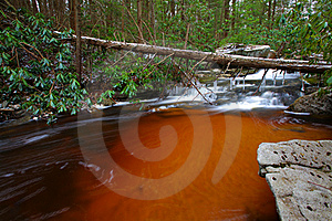 Natural Tannin Colored Stream In The Mountains Royalty Free Stock Images - Image: 23101929