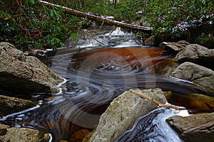 Natural Tannin Colored Stream In The Mountains Stock Image - Image: 23101951