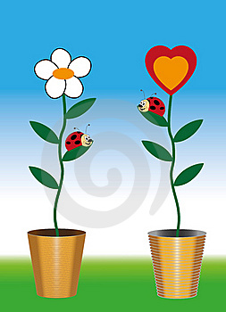 Funny Picture Of Two Ladybug Royalty Free Stock Photo - Image: 23128475