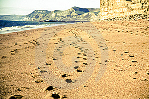 Footsteps In The Sand Stock Images - Image: 23130014