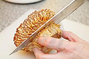 Cutting Enoki Mushrooms Stock Images - Image: 23131634