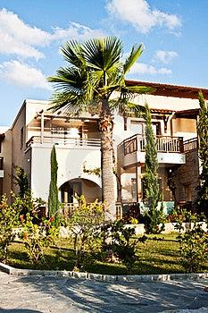 Palm Royalty Free Stock Photos - Image: 23148028