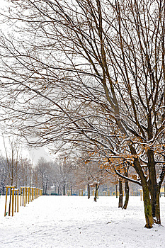 Snowy Day In The Park Stock Photos - Image: 23148643