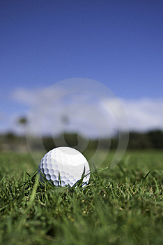 Golf Ball Lies In The Fairway Stock Image - Image: 23162941