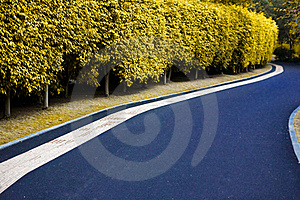 Curved Road Royalty Free Stock Image - Image: 23173696