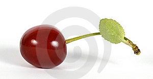 Cherry Stock Photography - Image: 23186552