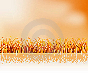 Grass Reflection Royalty Free Stock Photography - Image: 23187837