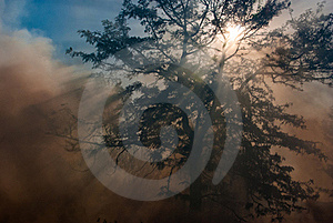 Smoke And Sun Rays Royalty Free Stock Photography - Image: 23190317