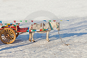Carriage In The Snow Royalty Free Stock Image - Image: 23195056