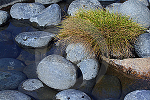 River Rocks Royalty Free Stock Photography - Image: 23246247