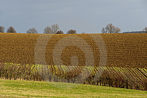 Plowed Field In Winter Stock Photography - Image: 23285842