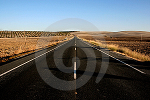 On the road outside Sevilla Free Stock Photos