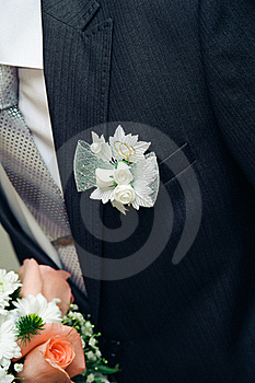 Posy With Roses On Groom Suit Royalty Free Stock Photos - Image: 23300658