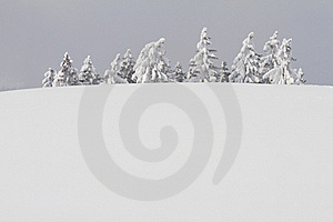Snowbound Trees Behind Hill Stock Photo - Image: 23322010