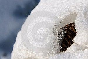 Snow Captured Stock Photos - Image: 23328533