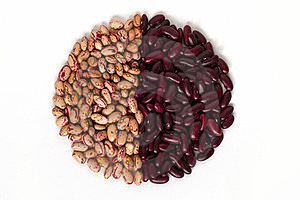 Common Beans Stock Photos - Image: 23368263