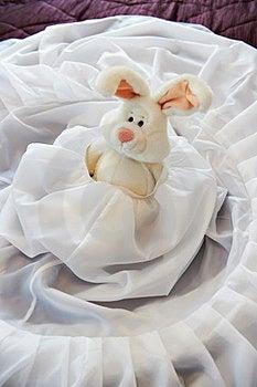 Toy Rabbit In Wedding Dress Stock Photo - Image: 23371700