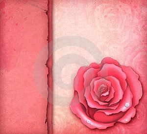 Card With Pink Rose Stock Photography - Image: 23373872