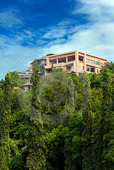 House In The Rainforest Stock Photo - Image: 23395710