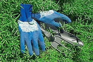 Gloves And Garden Shovel And Rake Stock Image - Image: 23409781