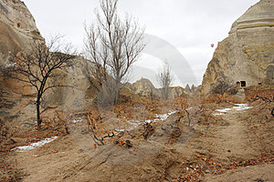 The Valley With The Grape Bushes In Cappadocia Royalty Free Stock Image - Image: 23411926