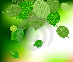 Green Leave Background Royalty Free Stock Images - Image: 23422649