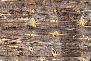Old Wooden Boards Stock Image - Image: 23443461