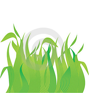 Meadow Grass Royalty Free Stock Photo - Image: 23445785