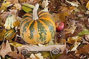 Autumn Stock Image - Image: 23455551