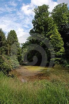 Arboretum Royalty Free Stock Photo - Image: 23459585