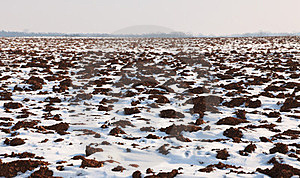 Field In Winter Royalty Free Stock Image - Image: 23552476