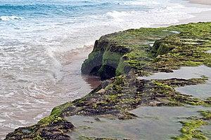 Coastline Brazil Stock Images - Image: 23586324