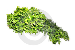 Fresh Green Lettuce Frillice Salad And Dill Stock Image - Image: 23588931