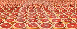 Slices Of Grapefruit. Stock Photo - Image: 23613390
