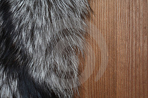 Fur On Wood Stock Image - Image: 23639341