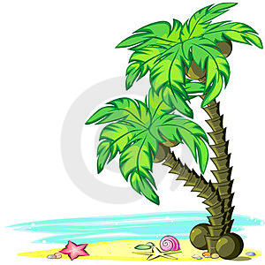 Palm Trees And Sea Royalty Free Stock Photography - Image: 23647817
