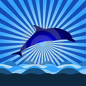 Shine With Dolphin Royalty Free Stock Photography - Image: 23648237