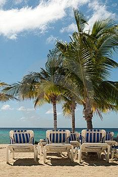 Tropical Beach Stock Photo - Image: 23655030