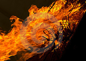 Fire And Flaming Stock Photo - Image: 23676380