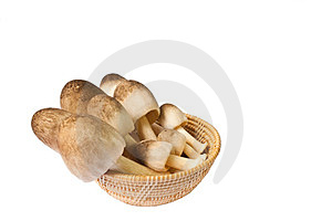 Mushroom In A Basket Stock Photography - Image: 23700942
