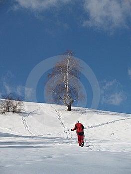 Young Climber Walking Stock Photos - Image: 23704093