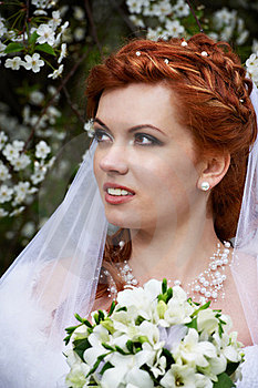 Beautiful Bride And Flowers Royalty Free Stock Image - Image: 23730206