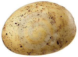A Small Potato Royalty Free Stock Images - Image: 23747459