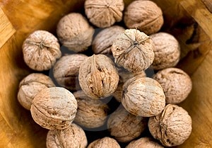Walnuts Stock Photo - Image: 23755930