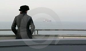 Sea Gazing Royalty Free Stock Image - Image: 2381136